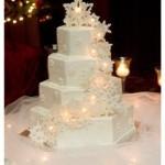 Un consiglio di Roberta: Sposarsi in inverno? perchè no!?!