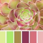 Come Scegliere la Palette dei Colori del tuo Matrimonio in 4 Passaggi