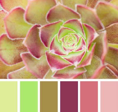 palette colori matrimonio