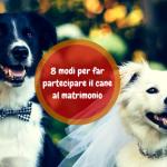 8 Modi per far partecipare il cane al matrimonio