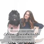 "Wedding Dog Sitter, Elisa Guidarelli: ""Il tuo cane alle nozze? É l'ospite d'onore"""